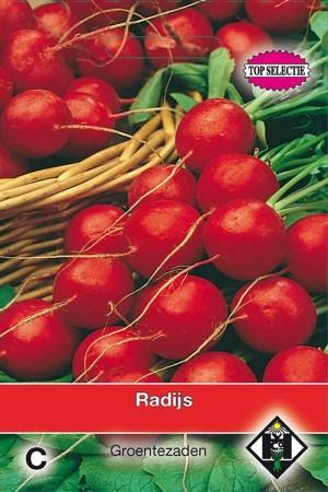 Raxe - Radish
