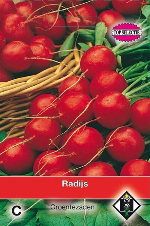 Raxe - Radijs