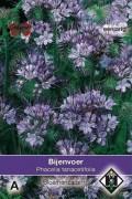 Tanacetifolia Phacelia - Bijenvoer zaden