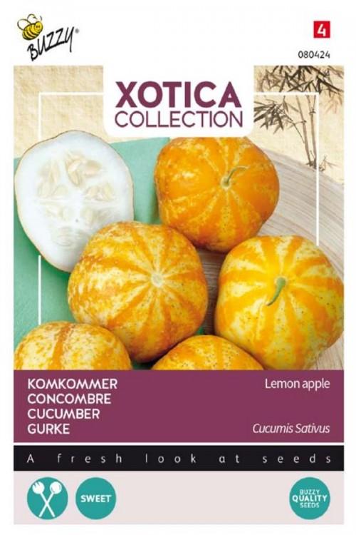 Lemon Apple - Cucumber