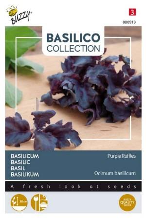 Purple Ruffles Basilicum