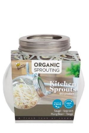 Sprouting Jar - Mung Beans