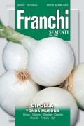 Tonda Musona white onion seeds