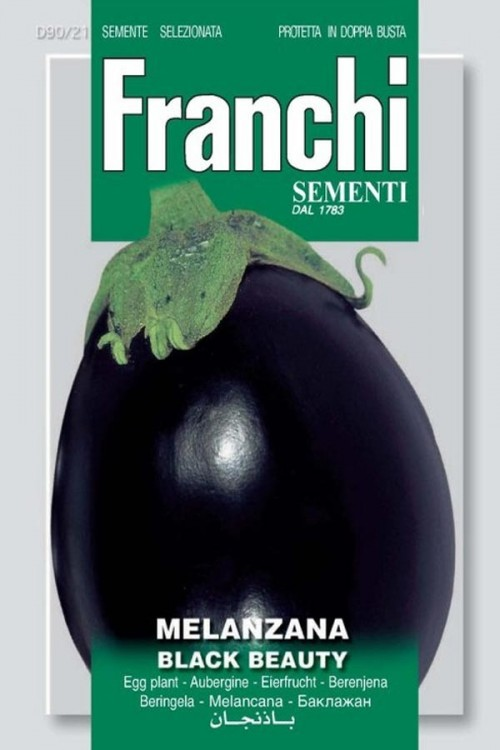 Black Beauty - Aubergine