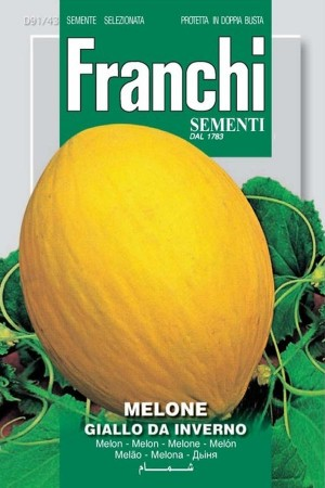 Giallo Da Inverno - Melon
