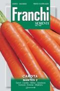 Nantes 2 - Carrots