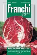 Palla Rossa Precoce - Red Chicory