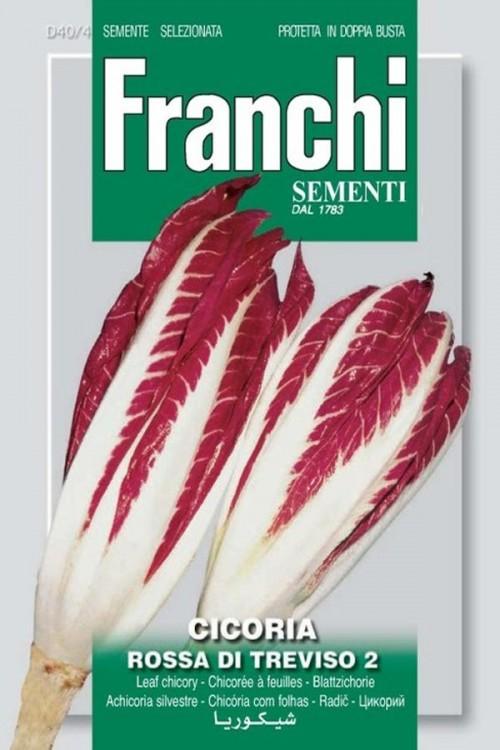 Rossa di Treviso 2 - Red Chicory
