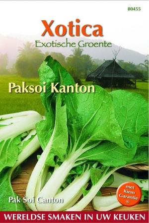 Paksoi - Pak Choi Kanton Canton