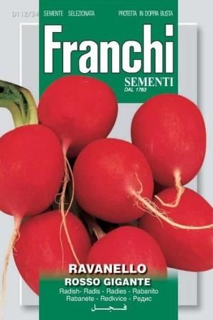 Rosso Gigante - Radish