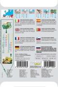 Catalogna Punterelle Brindisina - Chicory