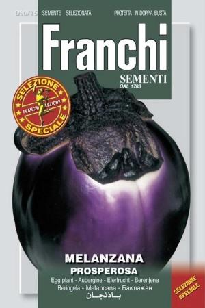 Prosperosa - Eggplant
