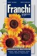 Mixed Girasole Sunflowers Helianthus seeds