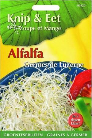 Cut & Eat Alfalfa Cress
