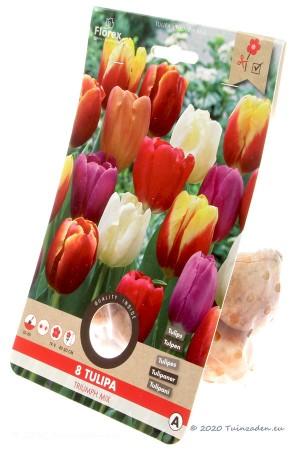 Gemengde Triumph Tulpen -...