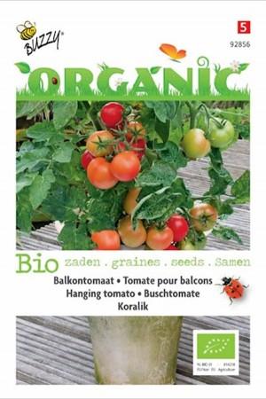 Koralik balcony tomato...