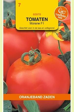 Morane F1 - Tomaten zaden