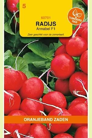 Annabel F1 - Radish seeds