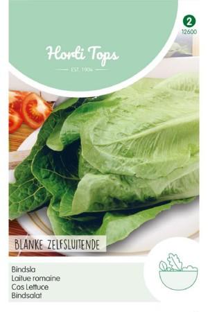 Paris White - Cos Lettuce...