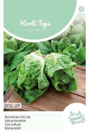 Little Gem - Cos Lettuce seeds