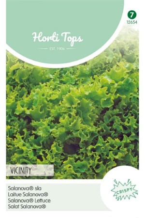 Salanova Vicinity - Sla zaden