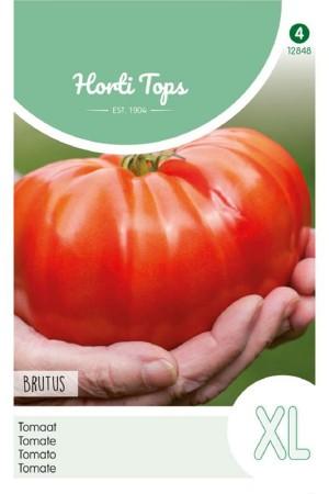 Brutus XL - Tomato seeds