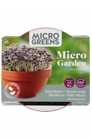 Red Mizuna Micro Garden -...