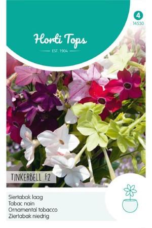 Tinkerbell F2 Nicotiana -...