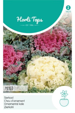 Fringed Ornamental Kale...