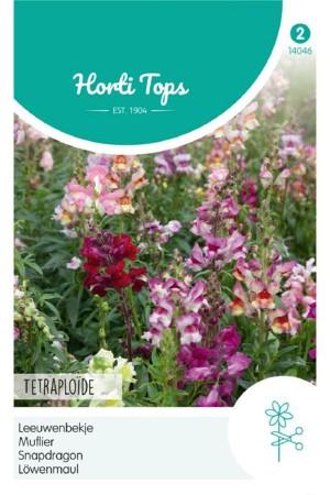 Tetraploide - Snapdragon seeds
