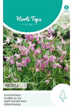 Avondviolier - Matthiola zaden