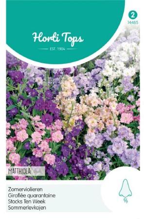 Zomerviolier - Matthiola zaden