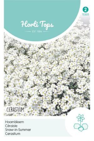 Snow-in-summer - Cerastium...