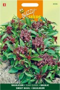 Siam Queen Sweet Basil seeds