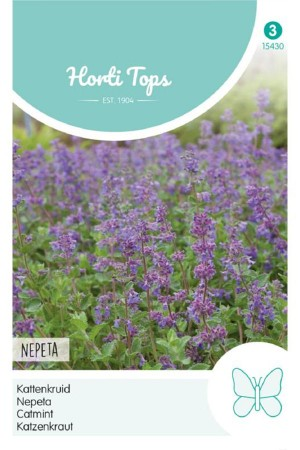 Catmint - Nepeta seeds