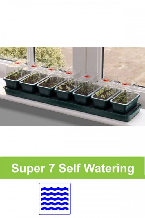 Self watering 7 x S propagator windowsill G136
