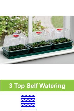 Self watering 3 x M...