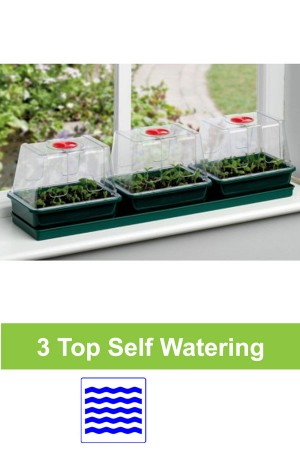 Windowsill Self Watering...
