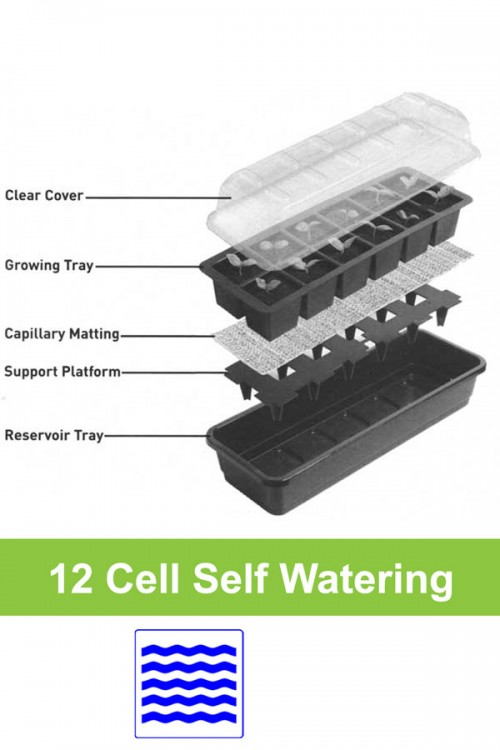 Self watering 12 cell propagator G166