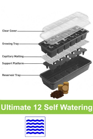 12 cell Self Watering...