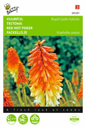 Royal Castle - Kniphofia seeds