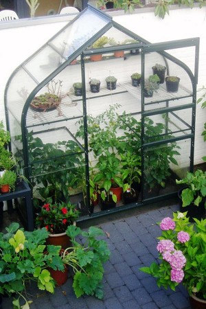 Supreme Wall Garden + FREE 15 EUR seed package