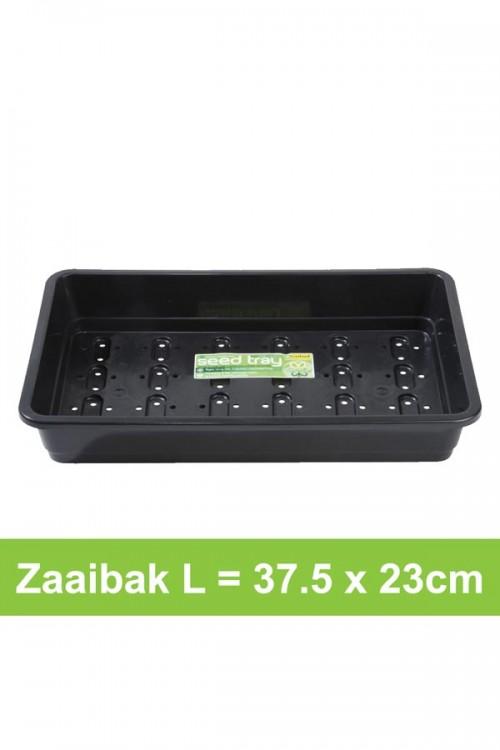 Large seed tray + drainage holes G17B