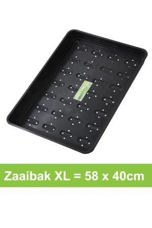 Zaaibak XL met gaten - 58 x...