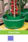 Plant Halo self watering protection