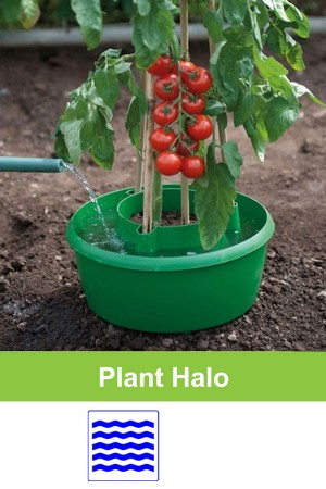 Plant Halo bewatering...