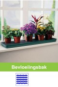 Windowsill Self Watering Plant Tray - G71