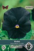 Viola Black Crystal - Viool zaden