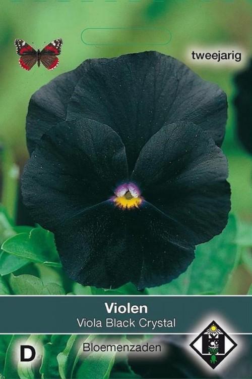 Viola Black Crystal - Pansy seeds