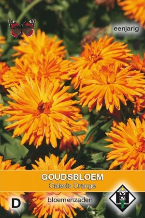 Calexis Orange Marigold...